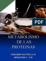 METABOLISMO PROTEINAS