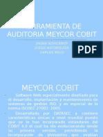 Herramienta de Auditoria Meycor Cobit