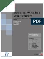 European PV Manufacturers Report 2010