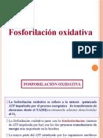 FOSFOXIDATIVA