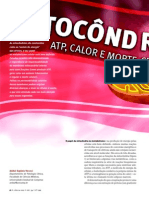 Mitocondria Revista Ciencia Hoje