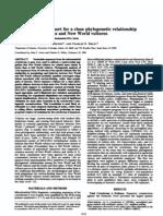 PhylogeniaAviseCondor