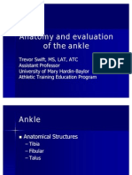 ankle ppt