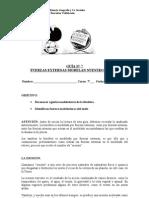 guan7erosin-110417231933-phpapp02