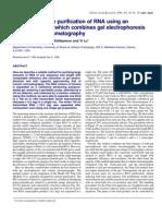 Preparative-Scale Purification of RNA