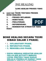 Bone Healing
