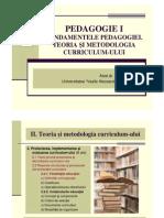Curs 10 PedagogieI Mata