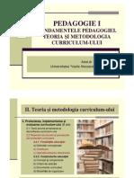 Curs 11 PedagogieI Mata