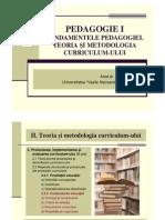 Curs 12 PedagogieI Mata