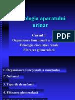 Fiziologia Aparatului Renal (1)