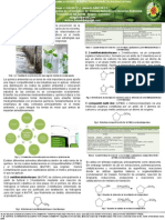 Poster Quimica Verde
