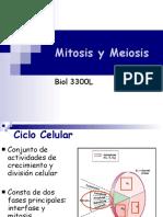 3 Mitosis y Meiosis