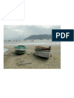 MCassou_Marinha08_Pântano do Sul_SC_BR