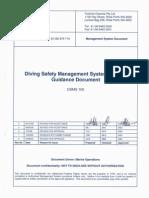 DSMS 100 Rev 4