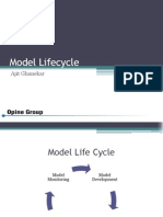 Model Lifecycle