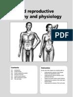 D10 Anatomy