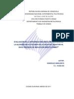 Evaluacion Integridad Mecanica Metalurgica Aleacion 304 h Reactor 40