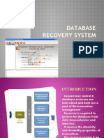 Database Recovery System