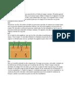 Formaciones Del Voleibol