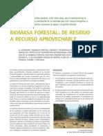Articulo Biomasa Forestal, De Residuo a Recurso Aprovechable