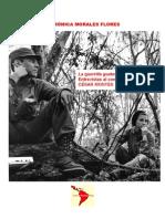 Análisis Guerrilla Guatemalteca en Imágenes