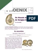 131 Bengtson & Souza-Lima 2000 - Phoenix