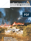 Incendios-forestales 11