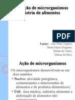 Aplicação de microrganismos na indústria de alimentos