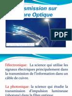 Fibre Optique 2009