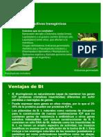 Genética_de_la_producción_6b