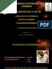 taxonomía enfermera