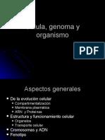 Célula, genoma y organismo
