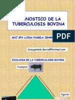 Diagnóstico de Tb
