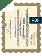 163061 Certificate