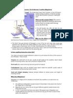 Case Study Holderness Coastline