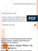 Expos Metodologia DiCarlo