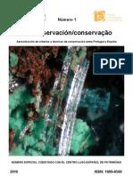 López, M. et al. Rayos X en la conservación de cerámica. 2010