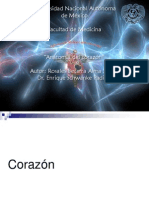 Anatomia_de_corazon