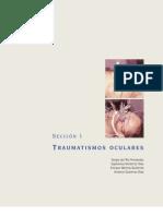 Sección 1. Traumatismos Oculares