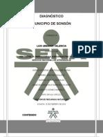 DIAGNÓSTICO MUNICIPIO DE SONSÓN