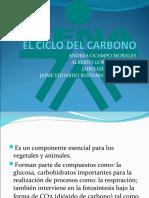 PRESENTACIÓN CICLO DEL CARBONO (ORIGINAL)