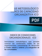 PRESENTACION ICOS