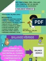 17309676 Balance Hidrico