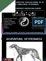 PROPUESTA_DE__SERVICIOS_ESPECIALIZADOS_EN_SU_CLINICA_O[1]