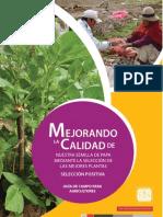 Mejorando la calidad de nuestra semilla de papa mediante la selección de las mejores plantas. Selección positiva. Guía de campo para agricultores.