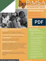 Final Pimsa Announcement 2011 - Spanish