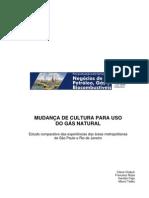 TCC - distribuição de gás natural 1