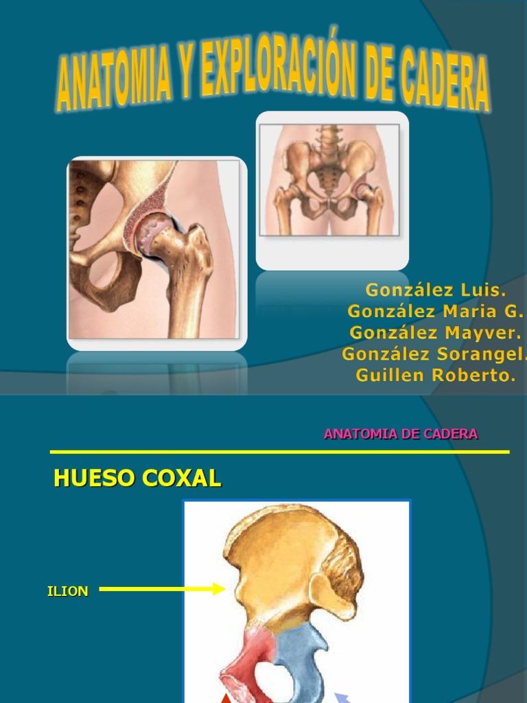 Presentacion de Cadera - Copia