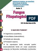 Aula 3 - Fungos Fitopatogênicos
