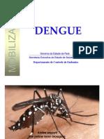 Dengue Informacoes